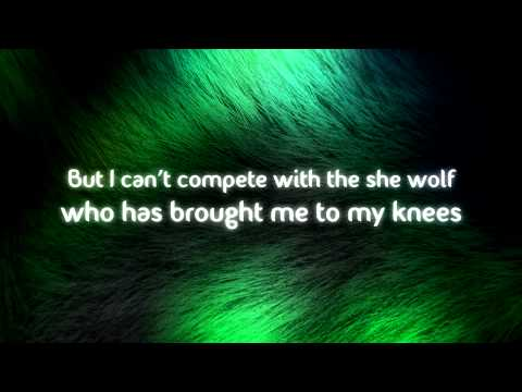 David Guetta Feat. Sia - She Wolf (Falling To Pieces) Lyrics Video HD