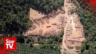 Logging activities rampant near water catchments in Kedah