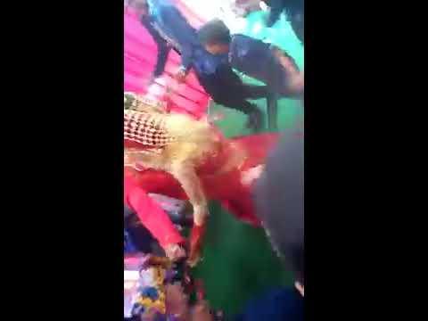 Gambus Banjarmasin As'syifa arabian Main ular tangga Bareng pengantin
