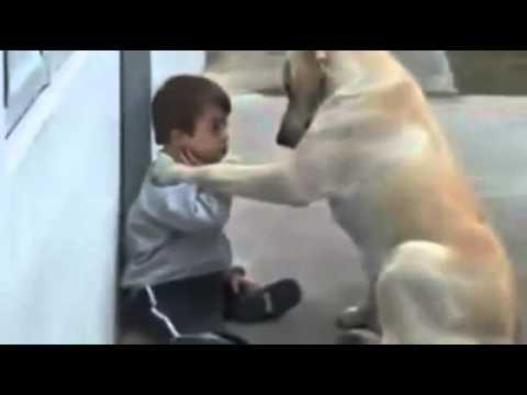 Zihinsel özürlü çocuk ile köpegin dostlugu - www.teknovid.com
