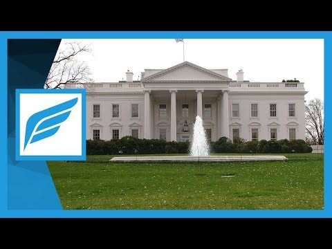 Why Study American Government // The Executive Branch