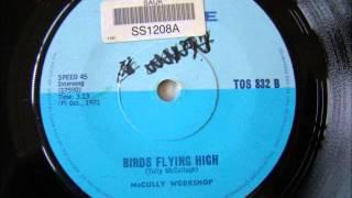 McCully Workshop - Birds flying high