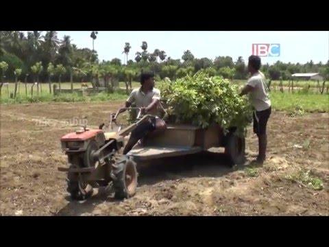 Veemankamam | Vanakkam Thainadu | Ep 09 | IBC Tamil TV