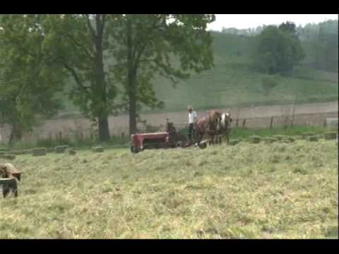 Amish Country - Take a ride in beautiful Holmes County, Ohio