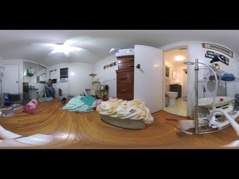 360 degree view of the Kitten Cuddle Room