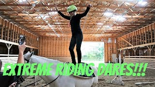 EQUESTRIAN RIDING DARES Day 279 (10/08/17)