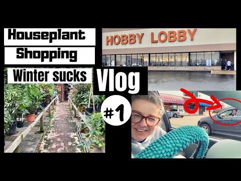 Come Houseplant Shopping With Me | House Plant Vlog #1