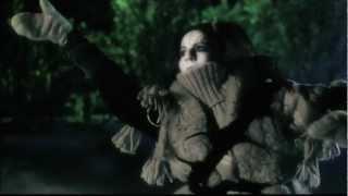 Elin Kåven -Lihkku Niehku/Dream of Fortune Music video