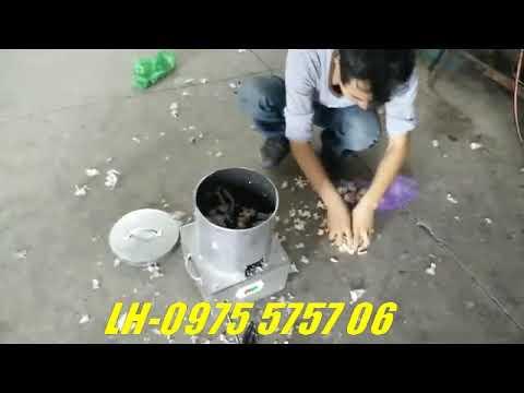 Máy bóc vỏ tỏi - máy bóc vỏ hành- Máy lột vỏ tỏi mini nhanh gọn nhẹ - YouTube