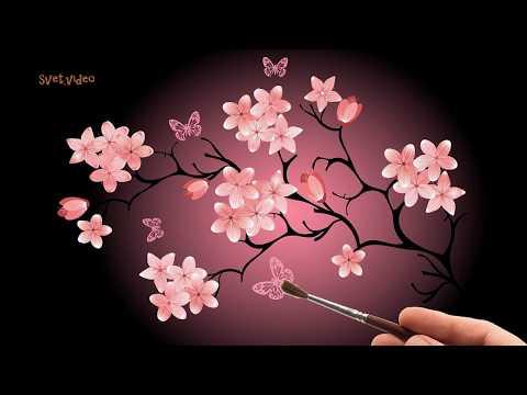 Ветка сакуры на черном фоне под красивую японскую музыку