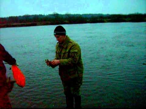 рыбалка на фидер на березине