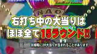 平和/2009年9月頃デビュー予定 【CR及川奈央のフルーツスキャンダルS...