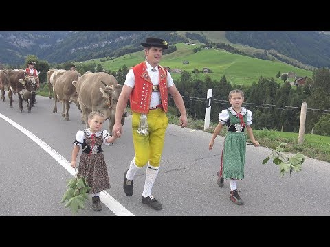 Alpabfahrt Appenzell 27.8.2018
