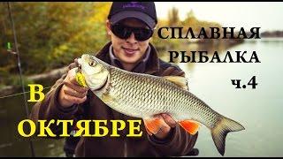 видео Ловля голавля осенью на спиннинг