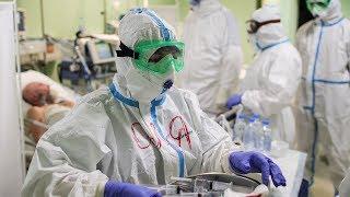 Массовые испытания вакцины от коронавируса в России Особый вид мышей