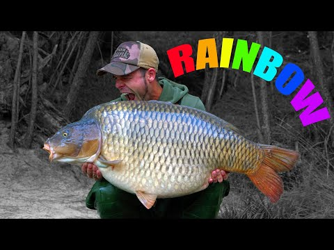 RAINBOW - The Worlds Most EXTREME CARP FISHING