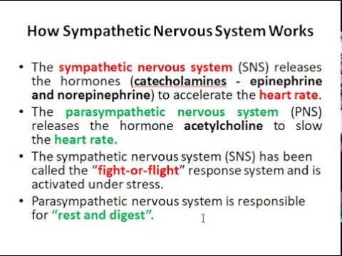 Antihypertensive drugs centrally acting sympatholytic drugs Part 5