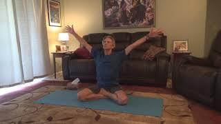 Yoganand Meditative Posture class 4 16 2020