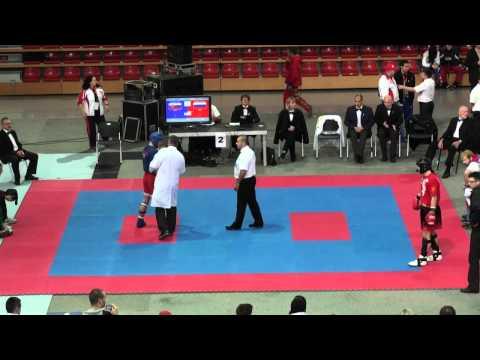 WAKO Kickboxing WC 2011 FINAL: KL -79kg Toth(SVK) Vs Lenberg(RUS)