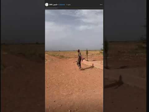 Au Maroc, des chasseurs étrangers posent devant les cadavres de centaines d'oiseaux