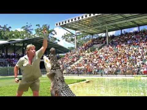 Australia Zoo's Crocoseum turns 10!
