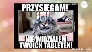 Memy o zwierzętach cz. 3