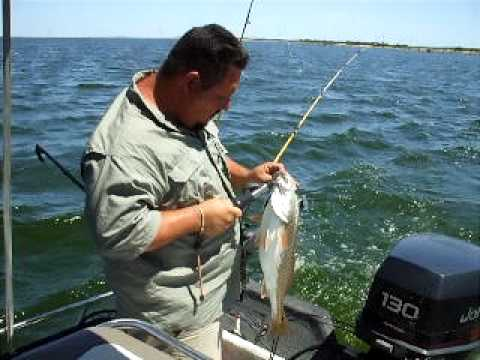 Calaveras Lake Redfish With Affordable Guide Service - Affordable guide service
