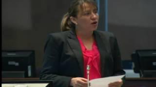 Sesión 446 del Pleno Continuación (04-05-2017)