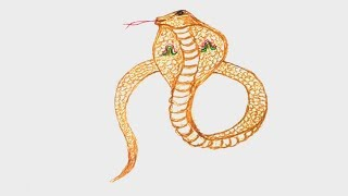snake easy drawing
