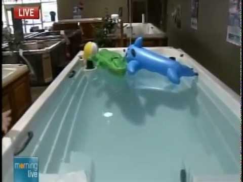 Arctic Spas All Weather Pool Swim Spa Interview Youtube