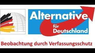 AfD Beobachtung durch Verfassungsschutz – wieso ausgerechnet jetzt?
