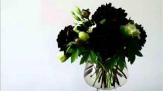 Ida Laila - Bunga Dahlia