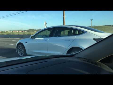 Tesla Model 3 white release candidate - Electrek