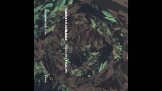 Guenter Schlienz - Treehut Visions (2014) FULL ALBUM