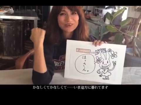 佐田 真由美 youtube