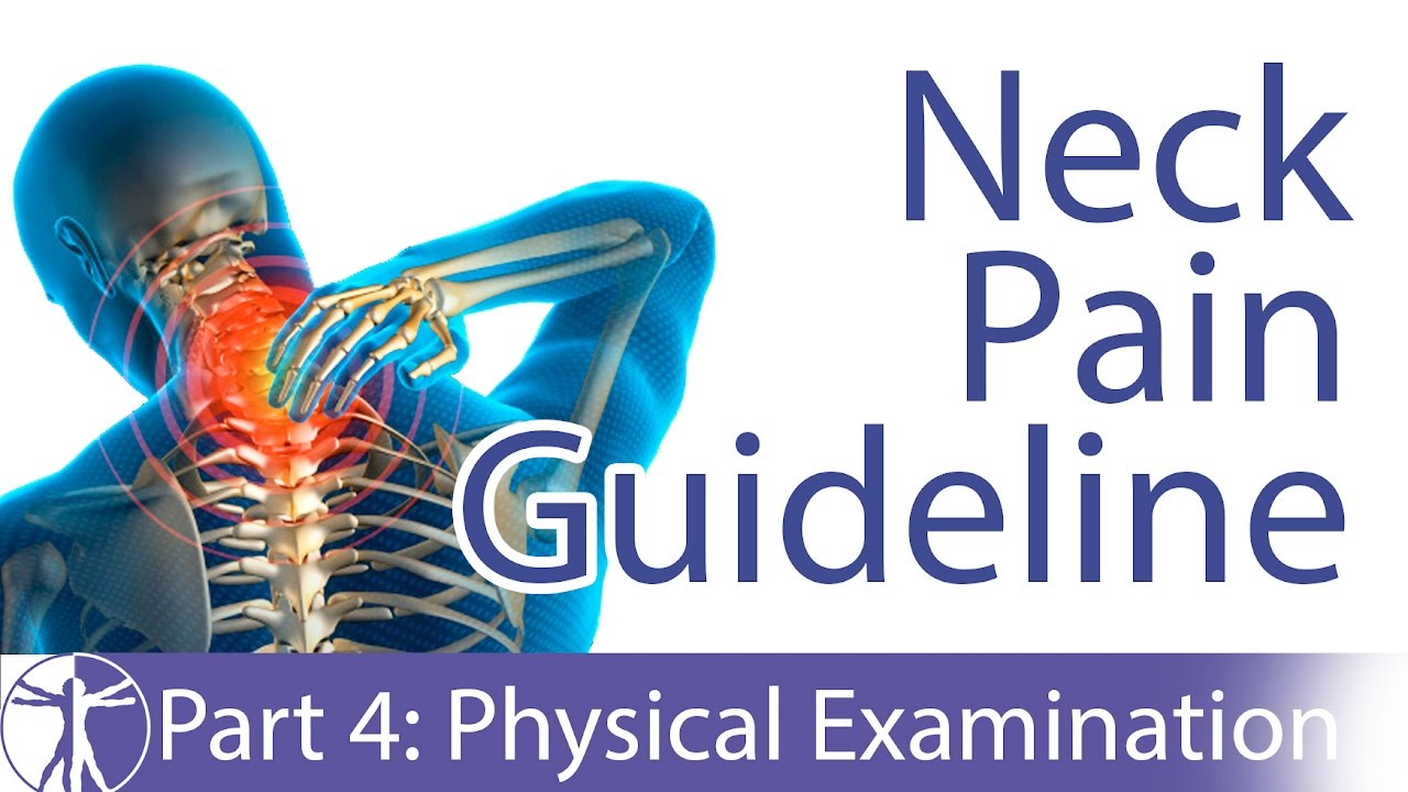 neck pain clinical practice guidelines 2008