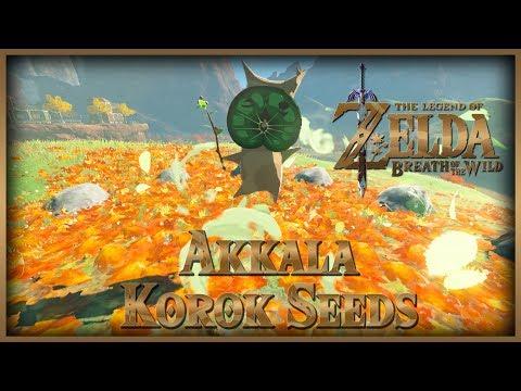 Zelda Breath of the Wild • Korok Seeds • Akkala