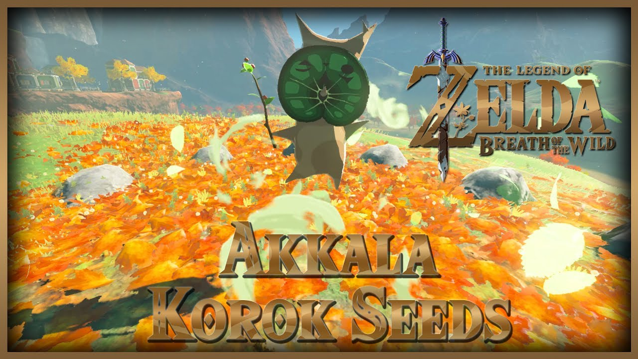 Zelda Breath of the Wild • Korok Seeds • Akkala