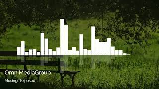 Musings Exposed - OmniMediaGroup - Computer Generated Copyright Free Music