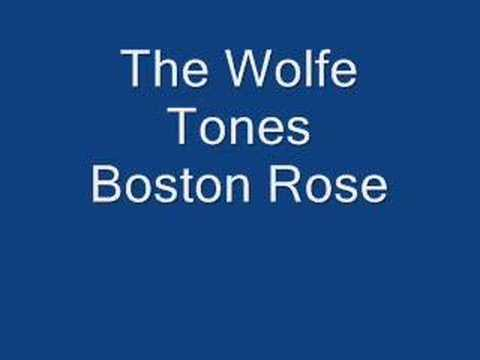 The Wolfe Tones Boston Rose