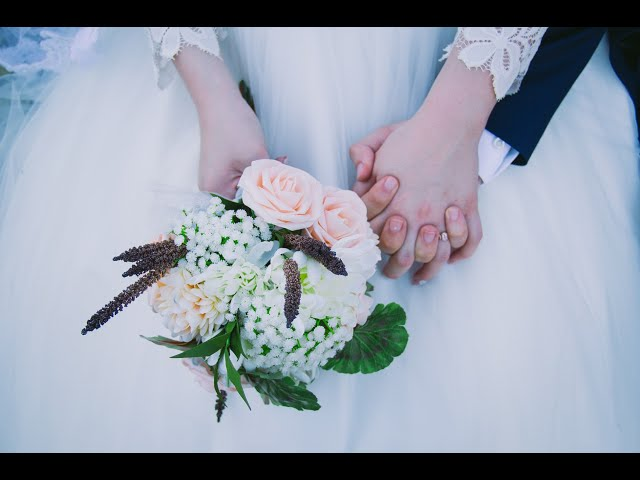 Harry's Video Blog - Happy Wife, Wealthy Husband: Parshat Bereishit