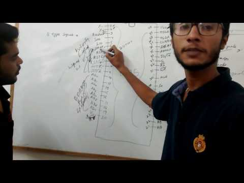 BEST LECTURE ON PIN DIAGRAM OF 8085 MICROPROCESSOR