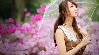 Huang Mei Gui 黃玫瑰 [ Mawar Kuning ] Sun Lu 孫露