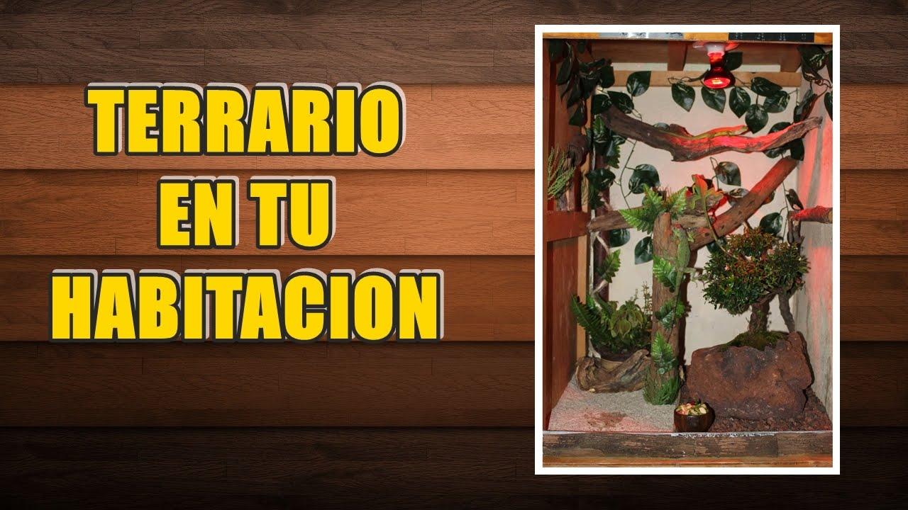 Idea Quot Terrario Para Tu Iguana Verde Quot Youtube