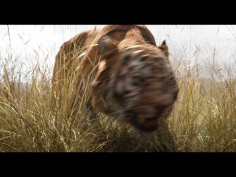 The Jungle Book (2016) - Trailer