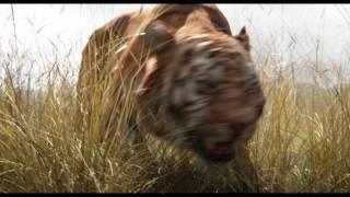 The Jungle Book (2016) - Trailer