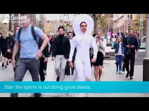 Genea Sperm Bank   Stan the Sperm doing good deeds