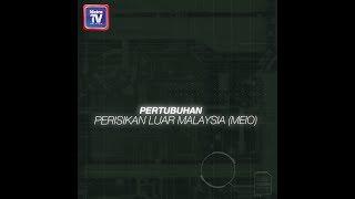 Pertubuhan Perisikan Luar Malaysia MEIO