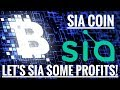 Siacoin - Let's Sia some profits + Litecoin + Bitcoin