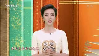 [2020年五四青年节特别节目]视频连线 雷神山建设者张鑫及同事 主持人:李思思| CCTV